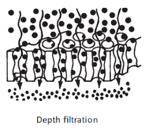 Depth Filtration